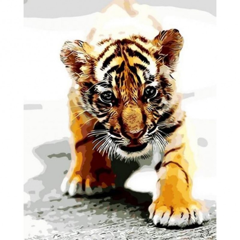 Paint-By-Number Tige...