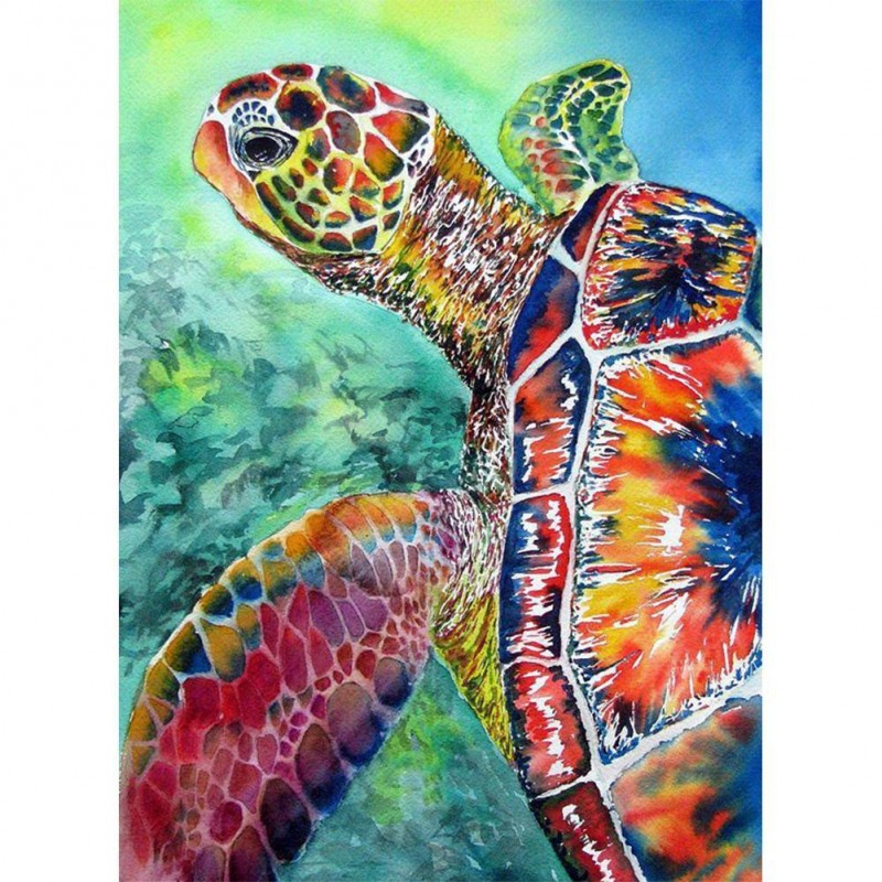 Paint-By-Number Turt...